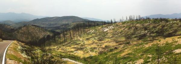 Vista panoràmica de la devastació entre Biure i Pont de Molins